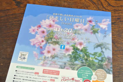 20161118_980_01